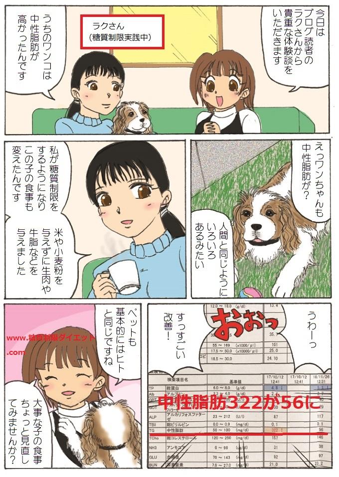 糖質制限で中性脂肪が下がった犬の漫画