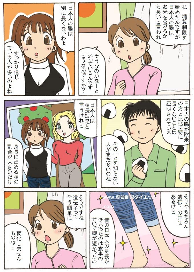 日本人の腸が長いのは嘘だという内容の漫画
