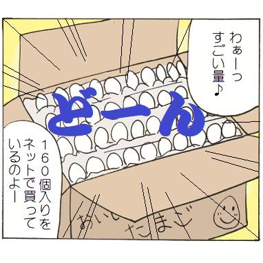 160個入りのネット通販の卵